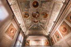 _biblioteca_marciana_venice_8t9990008 (isogood) Tags: italy basilica chapel church venice christian religion gothic nave frescoes ceilings paintings marciani library bibliotecamarciani
