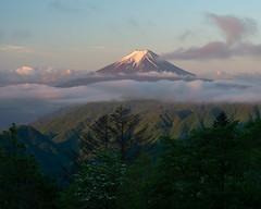 2018 Morning Fuji (shinichiro*) Tags: 大月市 山梨県 日本 jp 20180520ds53317 2018 crazyshin nikond4s afsnikkor70200mmf28ged fuji japan spring may 大峠 28812784368 candidate