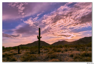 Skyline Regional Park, Arizona