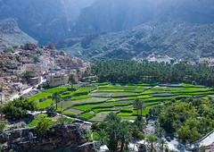 Village with lush green irrigated terraces, Al Hajar Mountains, Bilad Sayt, Oman (Eric Lafforgue) Tags: a0003648 agriculture arabia arabianpeninsula baladsay baladsayt beautyinnature biladsayt colorimage colourimage community cultivatedland cultures datepalm environmentalconservation famousplace farm field green gulfcountries horizontal idyllic landscape middleeast mountain mountainrange nopeople oman outdoors palmtree photography ruralscene scenics terracedfield tradition traveldestinations tree valley village alhajarmountains