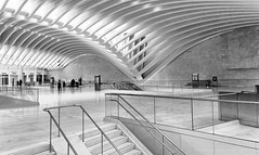 Path Station NYC (HarrySchue) Tags: newyorkcity oculus architecture blackwhite path station abstract monchrome people