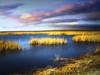 Prairie pond 25 (mrbillt6) Tags: landscape rural prairie pond waters grass sky outdoors country countryside northdakota yextnorthdakota yexttopviews