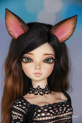 Commissioned classy wolf set SD (AnnaZu) Tags: classy wolf commission luka minifee fairyline tail ears bjd abjd magnetic polymer clay annaku annazu vesnushkahandmade balljointed dolls