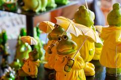 Frogs in the rain! (Lucien Schilling) Tags: konstanz mainau badenwürttemberg germany de frogs rain figures yellow raincoat
