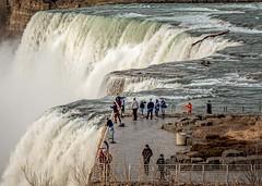 Selfie Op (Wes Iversen) Tags: americanfalls fencefriday hff lunaisland newyork niagarafalls niagarafallsstatepark niagarariver nikkor24120mm children fence men people rivers vacations waterfalls women