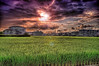 Rice is Life... (/\ltus) Tags: numazu shizuokaken japan rice pentax hdr sunset 沼津市 静岡県 日本 米 日の入