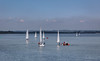 Learning the Ropes (clive_metcalfe) Tags: poole dorset uk harbour yacht training education