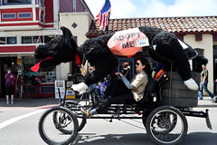 2018-05-28_14-34-33 (Hyperflange Industries) Tags: kinetic grand championship 2018 teams sculpture race event ferndale finish monday may eureka ca california
