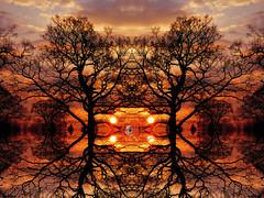 Golden (Tobymeg) Tags: mirrored double sunset sky altered images corel eye four suns panasonic dmcfz72