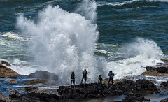 NewPep5282018-36 (Ranbo (Randy Baumhover)) Tags: oregon oregoncoast pacificocean thorswell capeperpetua hwy101