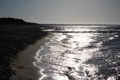 Prerow - Strandzugang 22 - Objektiv: 7artisans 50mm 1.1 (franz-wegener.de) Tags: leicat 7artisans50mmf11 ostsee strand