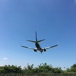 Ryan Air thumbnail