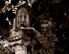 8 - Paris - Jardin du Luxembourg -  La Boca de la verita par Jules Blanchard (1871) - Détail (melina1965) Tags: îledefrance paris 75006 6èmearrondissement jardinduluxembourg panasonic lumix dmctz57 juin june 2018 sculpture sculptures statue statues sépia sepia macros macro arbre arbres tree trees