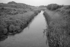Barmston Drain - Terminus (Tony McLean) Tags: ©2018tonymclean barmston eastyorkshire landscape blackwhite monochrome leicamonochrom leica35summiluxfle