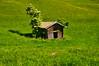 Lonesome log cabin (echumachenco) Tags: wood log hut roof plant holunder grass meadow green may spring oberjettenberg berchtesgadenerland berchtesgadeneralpen outdoor bavaria bayern germany deutschland nikond3100 tree field cabin