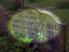 Tobacconist's Grave and Memorial (CEWWtyke) Tags: headstone grave graveyard stone carving thomas todd tobacconist newcastle tyne all saints allsaints church engraving death memorial history historical family ancestor ancestry wear uk england great britain geordie writing text lower pilgrim street dog bank sarah william tobacco