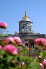 Rose (ralfkoplin) Tags: pflanzen park deutschland rose rosen marmor palais palast potsdam