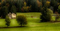 Vestige (Fred&rique) Tags: lumixfz1000 photoshop raw hdr nature paysage ferme abandonnée ruines vestiges arbres champs vert jura automne
