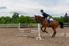JBC_5454.jpg (Jim Babbage) Tags: krahc horseshow appaloosa horses 2018 bethany