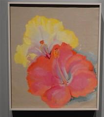 Art by Georgia O'Keefe (Stanley Zimny (Thank You for 31 Million views)) Tags: art flower georgiaokeeffe bronx botanical garden painting