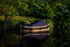 Woodland sailing (gina.nicole.tesloff) Tags: sailing boat green river water reflection beautiful wildlife woodland woods warm enchanting england efflorescence evening romantic ripple relaxing texture travel trees tradition uk outdoors pattern pretty perspective artistic summer sun shadow sunlight detail delicate depth forest glow graceful hot light leaf leaves canon contrast colour colourful countryside bright beauty background nature natural