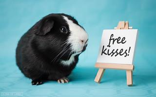 Sjors gives away free kisses!