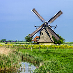 Postcard From Friesland (TablinumCarlson) Tags: netherlands niederlande nederlande nederland holland hindeloope friesland windmühle mill windmill mühle wendemühle landschaft landscape kanal channel leica leicam summicron m240 westfriesland westernfriesland driesland workum 90mm