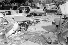 041269 15 (ndpa / s. lundeen, archivist) Tags: nick dewolf nickdewolf blackwhite photographbynickdewolf bw 1969 1960s 35mm film monochrome blackandwhite april usvi virginislands usvirginislands stthomas caribbean junk junkyard cars car vehicle vehicles automobile automobiles abandoned junkers cargraveyard carparts oldcars bird rooster