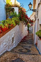 Calle florida, Frigiliana (juanmzgz) Tags: frigiliana málaga andalucía españa calle arquitecturapopular flores farola