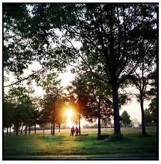 Into The Light ... (Boris Brückhäuser) Tags: sun analogue analog mediumformat film bronica people walk park evening lighting portra low warm light ambient ambientlight lowsun field autaut