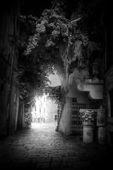 Split, Croatia (pas le matin) Tags: night nuit travel voyage world croatie croatia hrvatska europe europa split architecture nb bw noiretblanc blackandwhite monochrome canon 7d canon7d canoneos7d eos7d