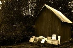 The forgotten ones (DameBoudicca) Tags: sweden sverige schweden suecia suède svezia スウェーデン hjälmseryd gravestone gravsten grabstein pierretombale lapide lápida lápidafuneraria 墓碑 ぼひ tombstone cemetery kyrkogård graveyard friedhof kirchhof begräbnisplatz cimetière cementerio cimitero 墓地 ぼち