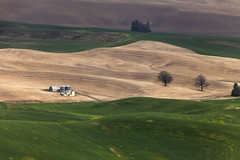 Steptoe Butte (Stephen P. Johnson) Tags: processed jpg washington eastern steptoe butte fields farming