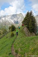 IMG_2208_DxO.jpg (Goodson73) Tags: didier bonfils goodson73 dgoodson bauges pointe de chaurionde 2157m parc du mouton rando montagne