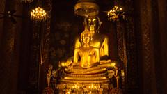Buddhas (Shane Hebzynski) Tags: statues bangkok gold golden thailand wat temple religion buddhsim candles