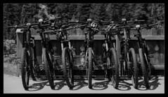 In a row (WibbleFishBanana) Tags: mountain bike cycle austria tyrol tirol österreich stilluptal zillertal alp alpine europe