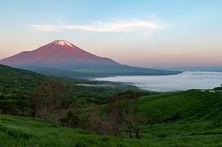 Fuji in the morning sun