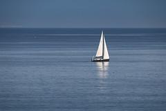 Libre ... (Eric DOLLET - Ici et ailleurs) Tags: ericdollet italie voiliers