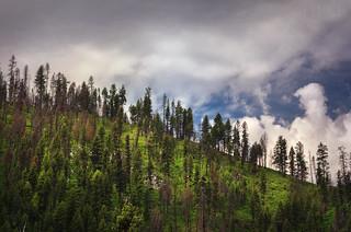 Lowman Idaho