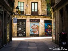 Barcelona street art (4) (by claudine) Tags: light16 light l16 barcelona spain architecture street art graffiti spray paint streetphotography capturedbylight capturebylight16 lightcamera urban flickrchallengegroup
