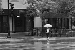 rainy Sunday morning (humbletree) Tags: madisonwisconsin rain olympus omd em5 blackwhite