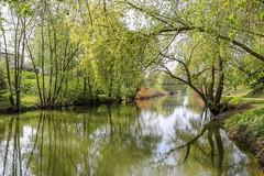 Seille (heiserge) Tags: arbres france landscape river nature parcdelaseille paysages reflets metz moselle europe rivière lorraine