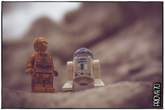 «I told you a million times one hour ago, you nearsighted scrap pile! We should have turned right after the second big rock, not left!» (Priovit70) Tags: lego minifigures starwars r2d2 c3po macro olympuspenepl7