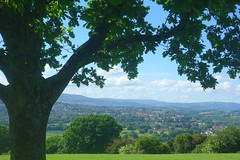 Distant Hills (Dave Roberts3) Tags: wales caerleon newport gwent view green clouds oak fields hills hilltop leaf leaves houses buildings town mynyddmaen christchurch