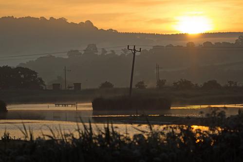 sunrise - Seaton Wetlands, Seaton, Devon - 3 June 2018