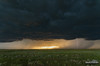It Won't Be Long (kevin-palmer) Tags: greatplains faith southdakota storm stormy thunderstorm severe supercell june spring summer evening clouds weather sky pentaxk5 tamron1750mmf28 field lightning strike bolt electric outflow gustfront sunset green grass gold golden glow sunlight