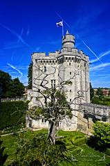 Oise Picardie France ( photopade (Nikonist)) Tags: donjon vez xivᵉ siècle château châteaufort nikond300 nikon architecture apple affinityphoto afsdxvrzoomnikkor1685mmf3556ged oise picardie ciel