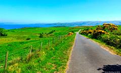 Scotland West Highlands Argyll a quiet countryside road the island of Cumbrae 28 May 2018 by Anne MacKay (Anne MacKay images of interest & wonder) Tags: scotland west highlands argyll quiet countryside road island cumbrae fields landscape sea xs1 28 may 2018 picture by anne mackay
