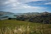Just See One Cruise Ship (Jocey K) Tags: bankspeninsula newzealand nikond750 sea akaroaharbour scene hills clouds sky cruiseship fence grass padock