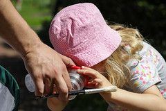 Edinburgh Botanic Gardens BioBlitz 2018 -183 (Philip Gillespie) Tags: • edinburgh royal botanic gardens 2018 big bioblitz bio blitz kids children men women man woman people fun faces smiles water wet insects bugs moths spiders legs arms eyes hats grass trees bushes plants short pool sun sky pond lilly wings park nature colour green blue red yellow orange purple science teach record check house cottage photo photography canon 5dsr rbgenature thebotanics dipping worms birds bigbotanicsbioblitz